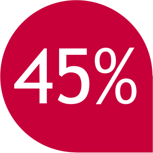 Resultado de imagem para 45% png